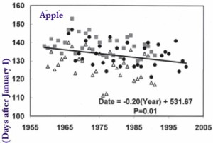 apple blossom data