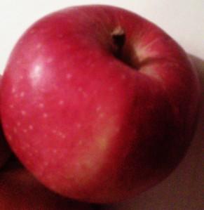 Ontario Gala Apple