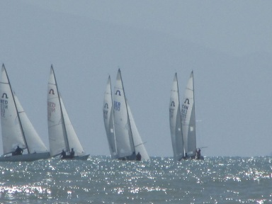 sailing regatta