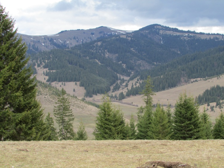The Carpathian Mountains in early spring