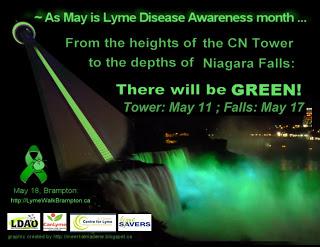 Lyme Awareness 2013