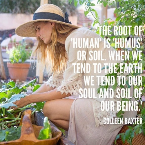 soul and soil